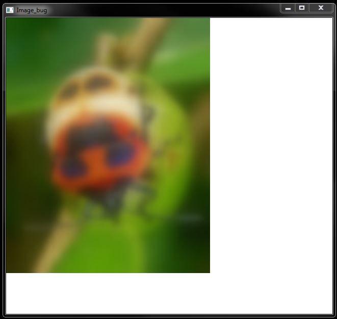 image_bug_blurred.JPG